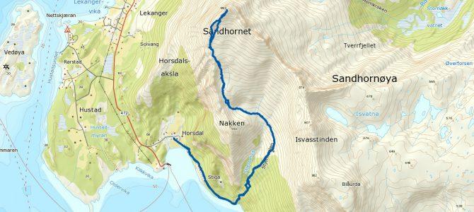 Sandhornet 993 moh